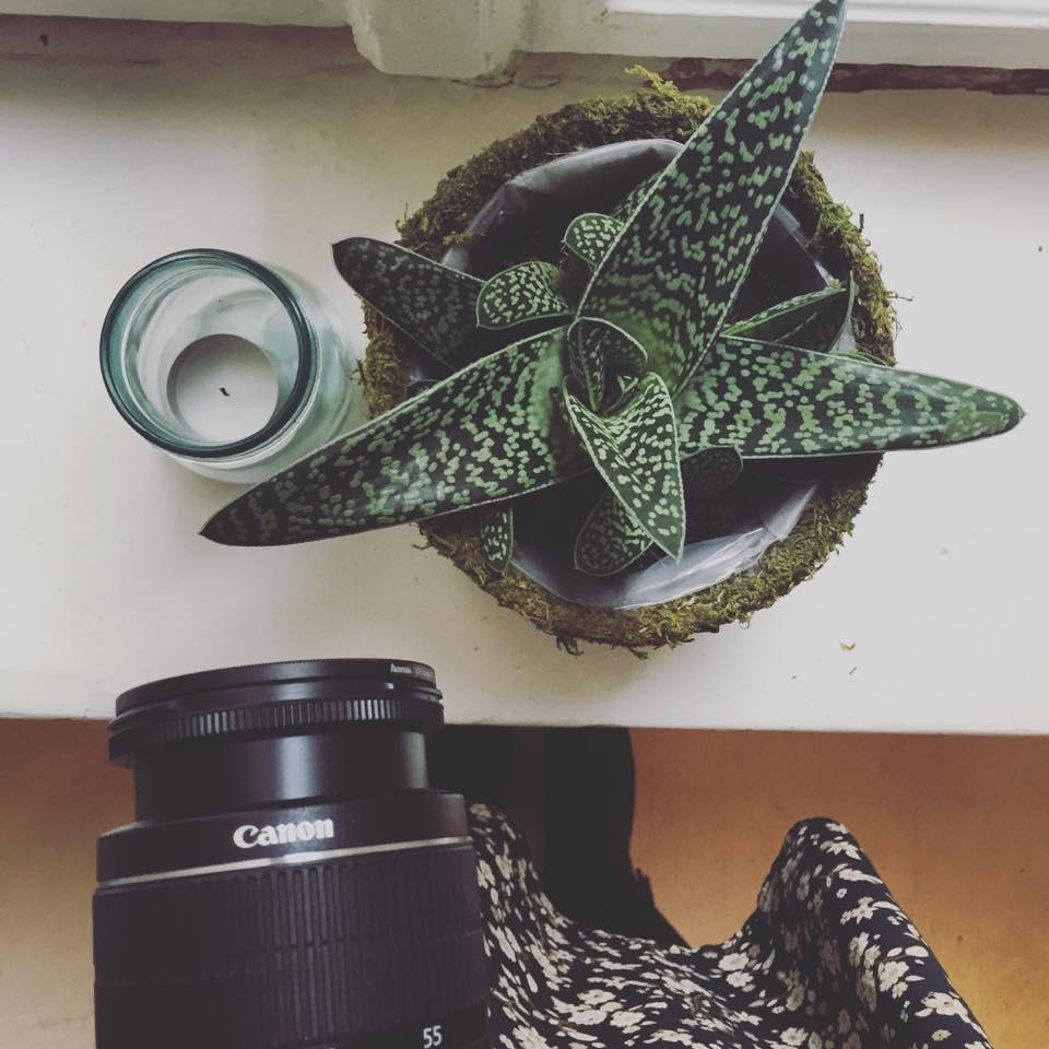 Frau mit Kamera und Kaktus