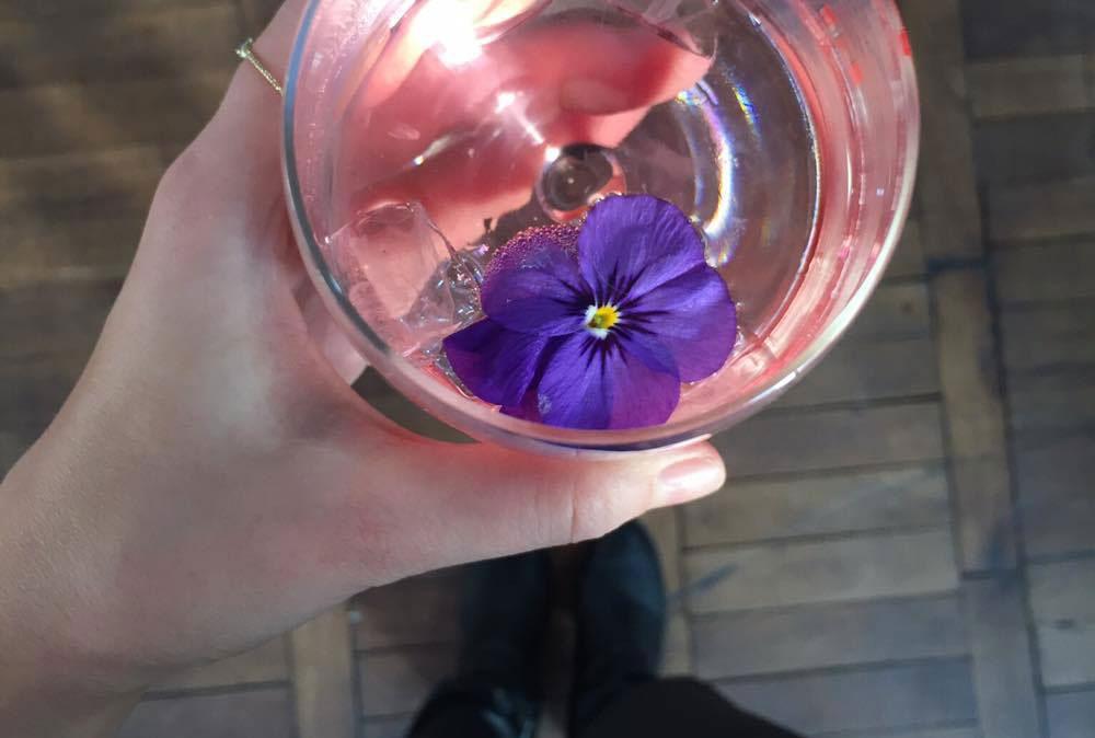 Glas Sekt mit Blüte