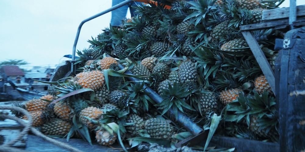 ananas auf boot