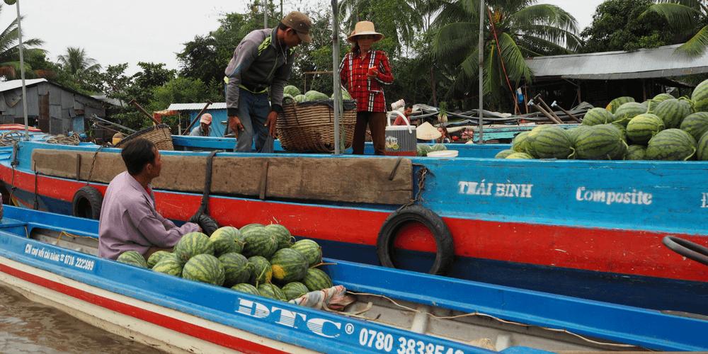 Wassermelonen auf Boot