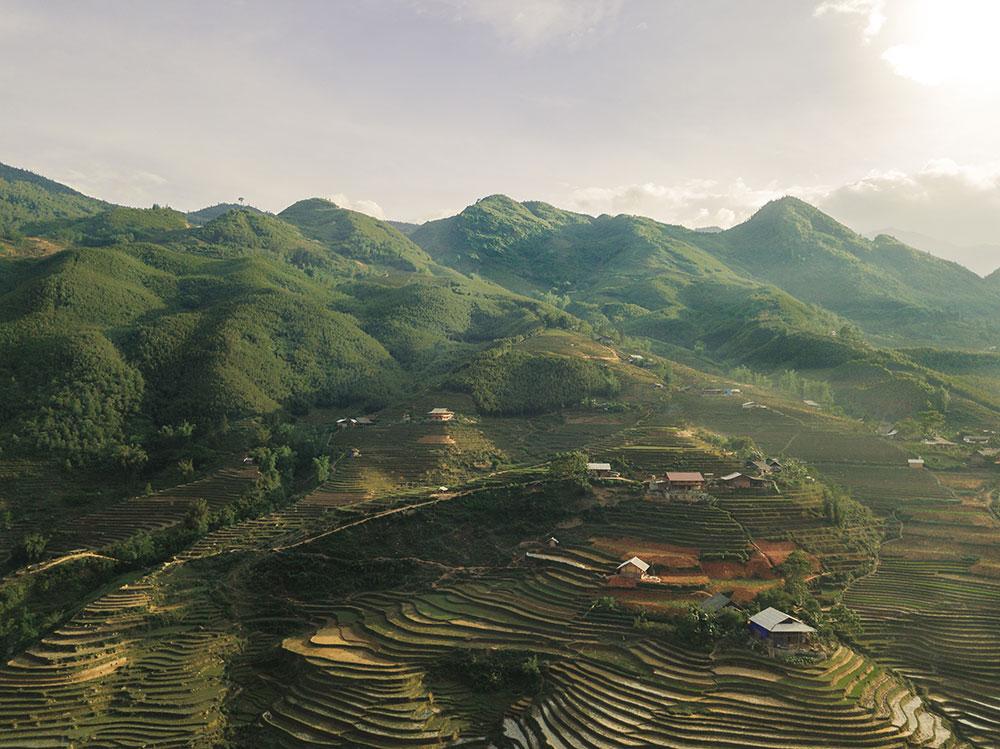 reisfelder sapa vietnam